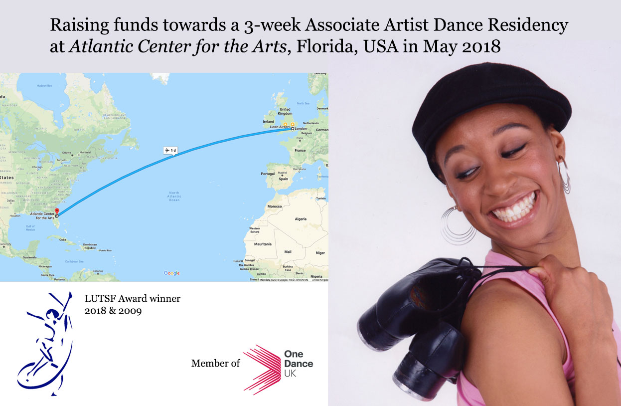GoFundMe Associate Artist ACA Residency 169, Florida, USA